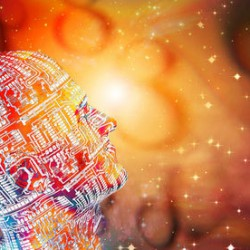 Is Our Creator A Cosmic Computer Programmer?